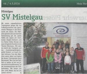 Artikel-Mein-Verein-U13-001-1024x874