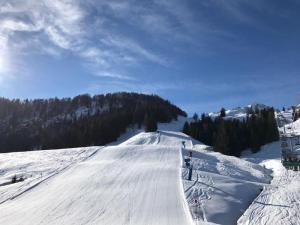 2017 Februar Skifahren in Fieberbrunn